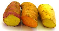 drie-gesneden-zoete-aardappelen