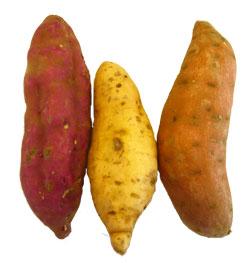 zoete-aardappelen