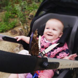 vlinder Burgers Zoo